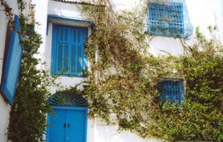 photo architecture andalouse sidi bou said